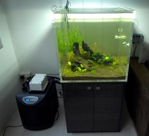 aquarium chiller